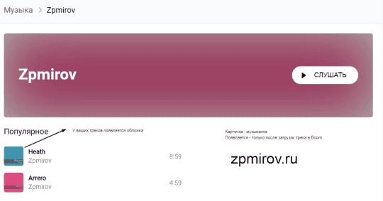 Карточка музыканта zpmirov